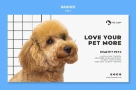 宠物医院宣传横幅设计 - A006